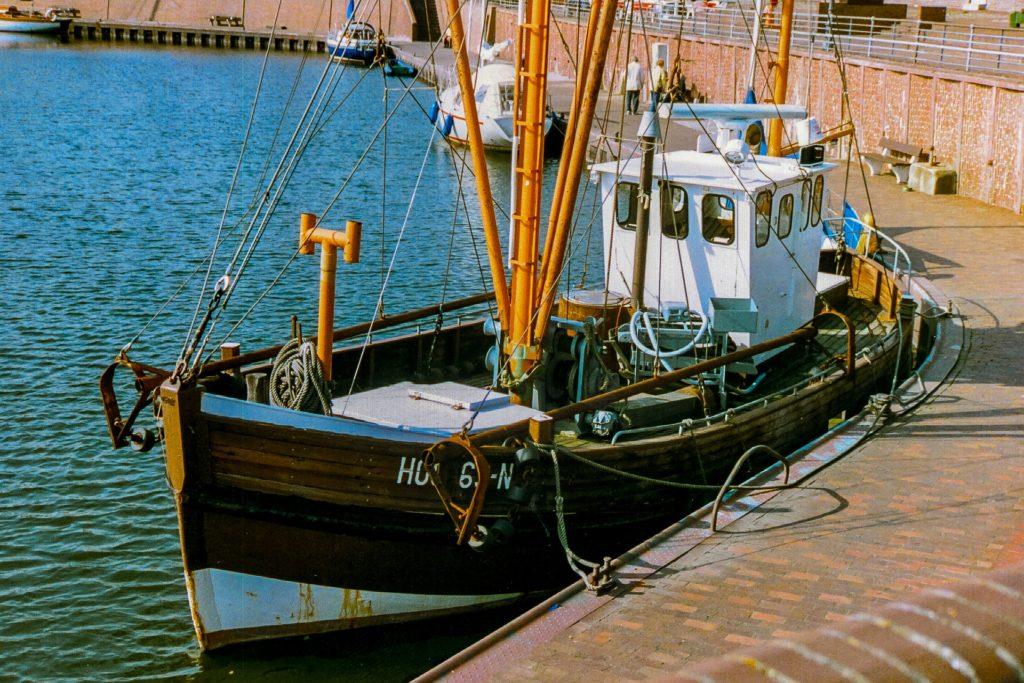 fisker fisk fiskeri